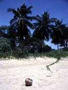 Auf der Suche nach dem perfekten Strand - II