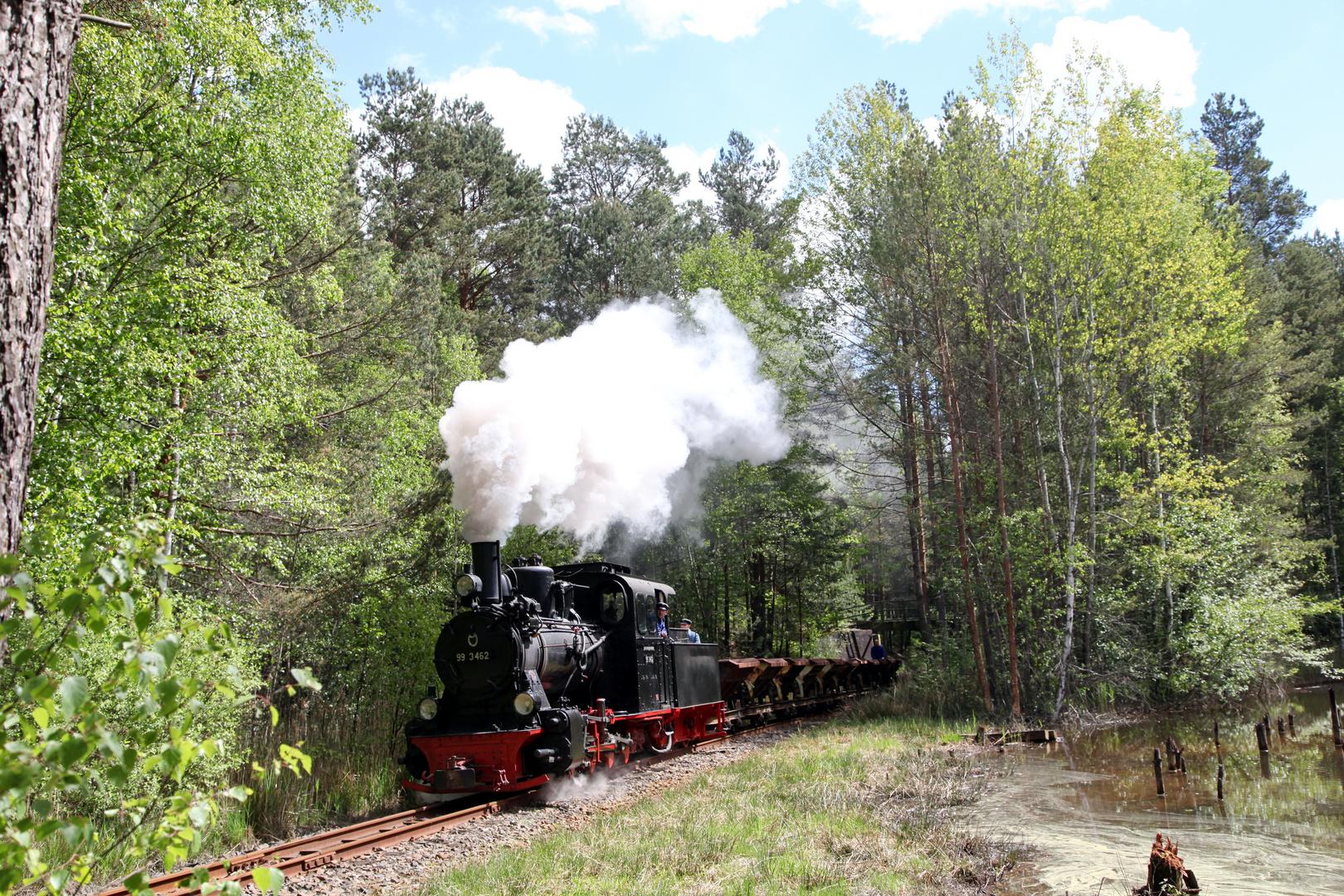 Auf der Waldbahn...