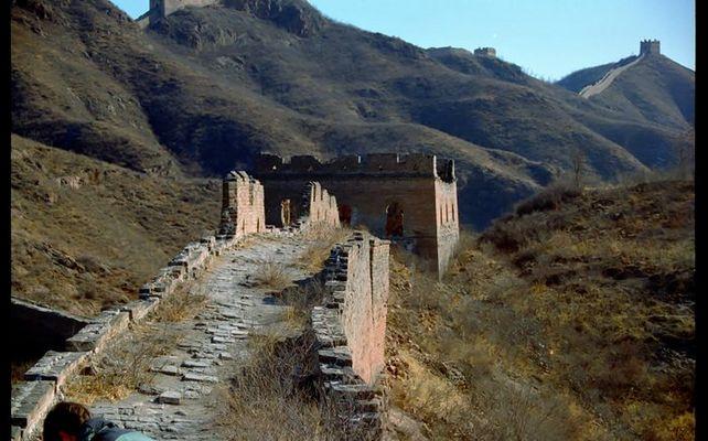Auf der wilden Mauer