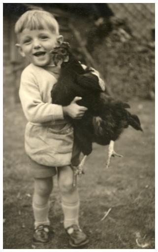 Auf Hühnerjagd