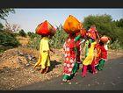 auf Indiens Straßen (8)