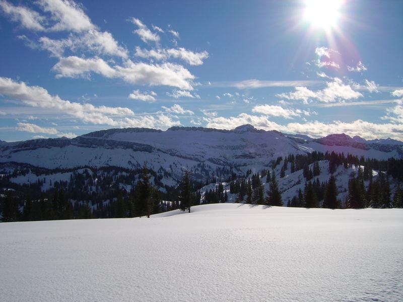 Auf leichten Füßen durch den Schnee