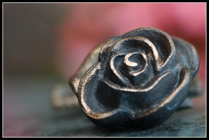 Auf meinem Grabe...steht irgendwann eine Rose...(v.2)