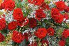 Auf Mutters Grab (2)