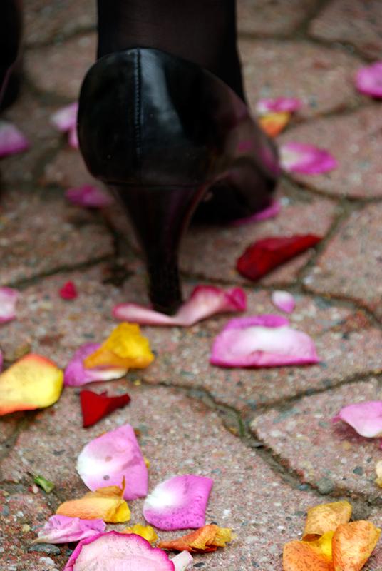 Auf Rosen