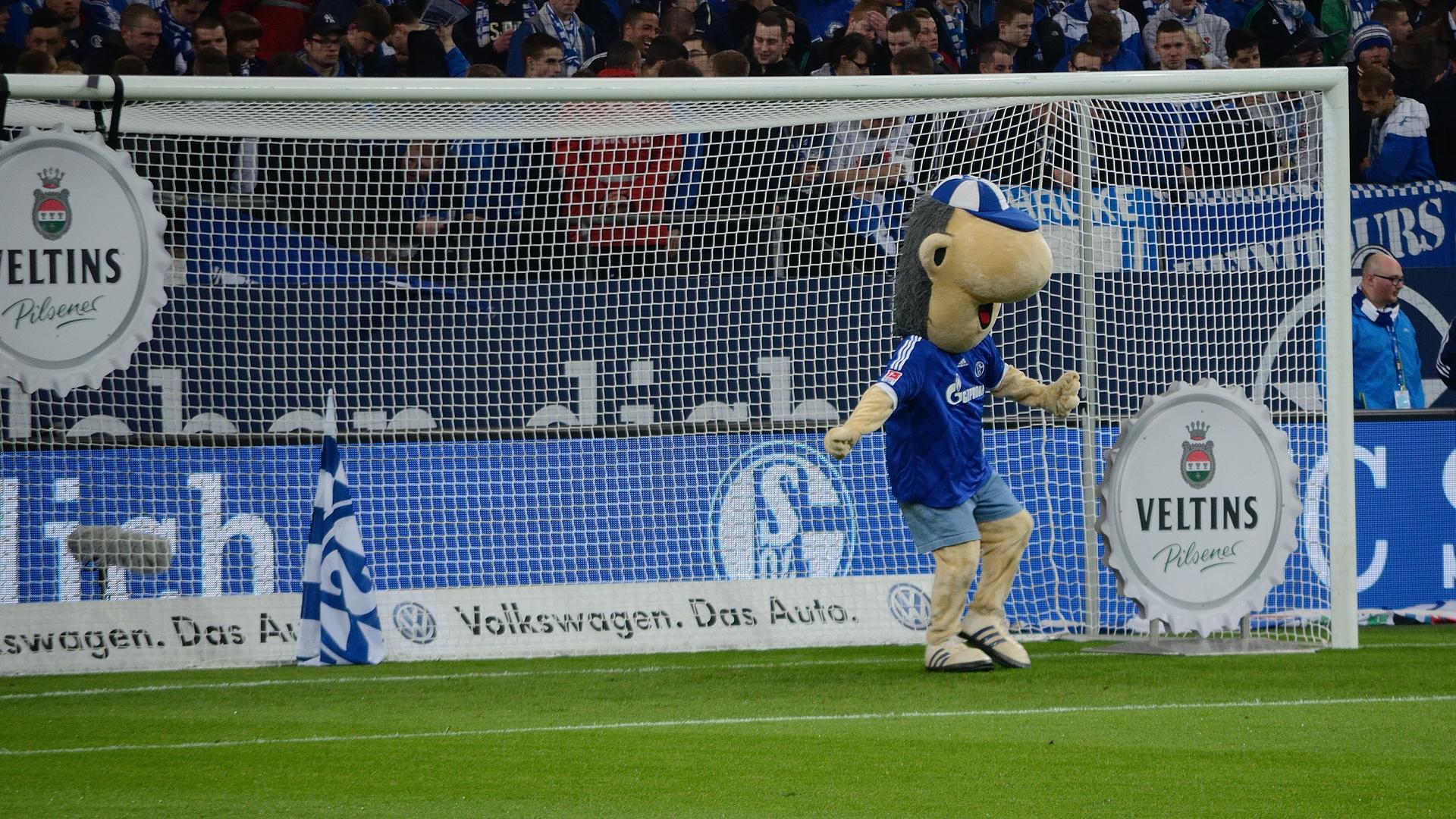 Auf Schalke. Erwin gibt alles...
