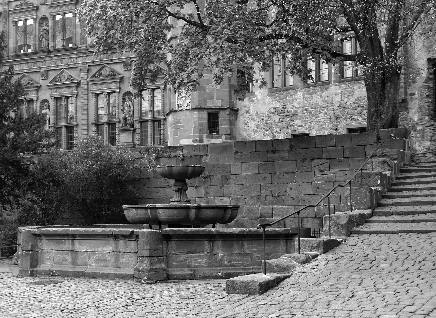 Auf Schloss Heidelberg