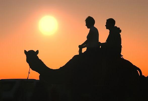 Auf schwankendem Kamelrücken