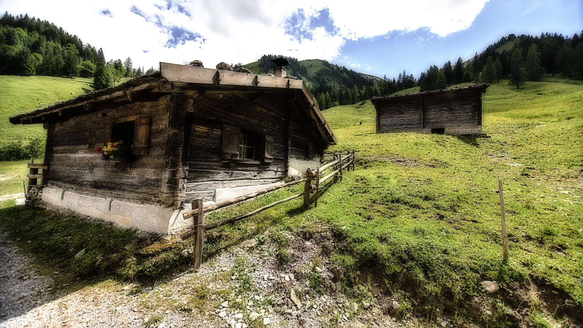 Auf Tiroler Almen