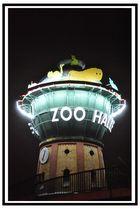 """""""auf zum Zoo"""""""