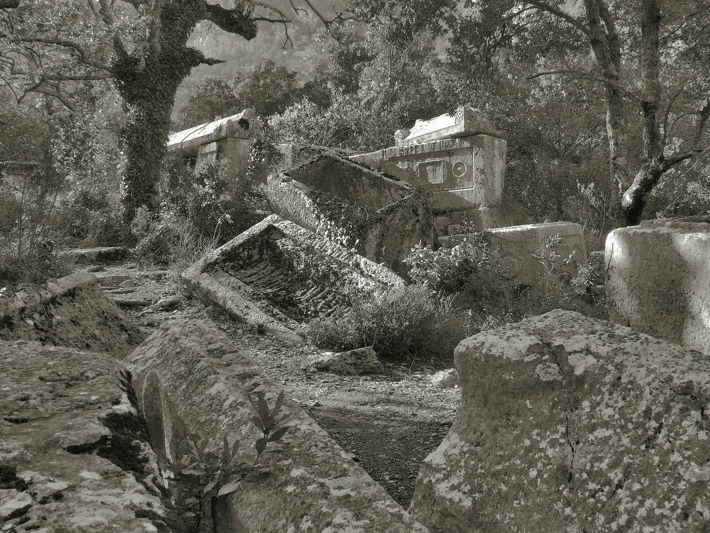 Aufgeworfene Gräber...