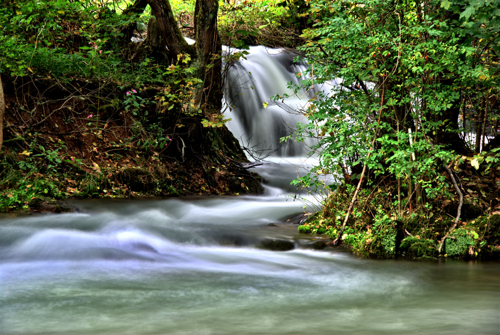 Wiesent Fluss