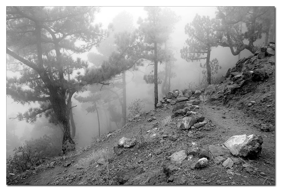 Aufstieg Pico Bejenado im Nebel