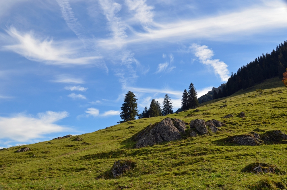 Aufstieg zum Hochgrat (1.833m)