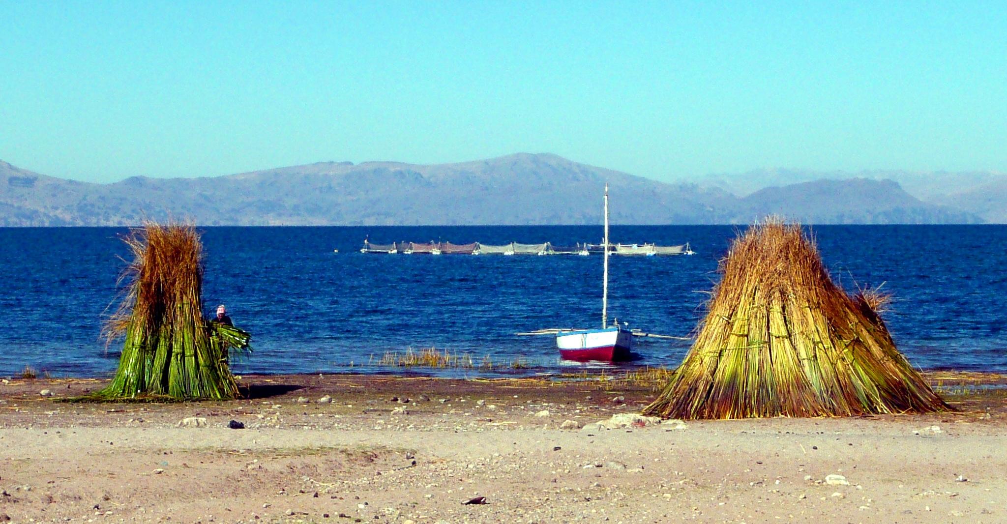 Aufwachen auf dem Titicaca-See