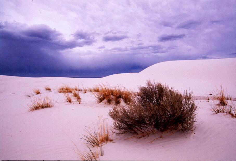 Aufziehendes Gewitter über den White Sand Dunes (New Mexico)