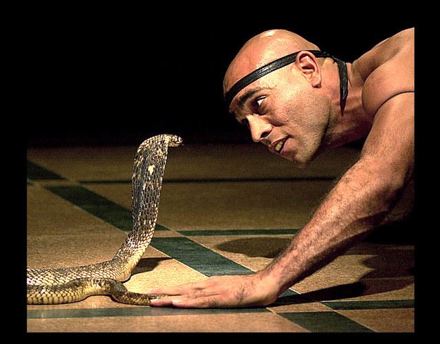 Aug' in Auge: Schlangenbeschwörer in Ägypten