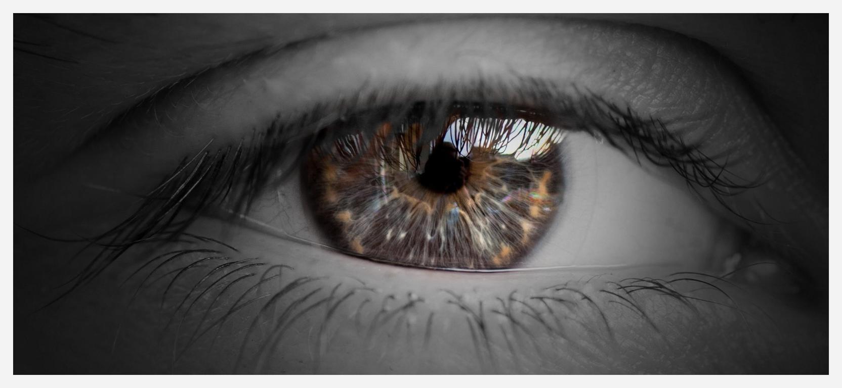 Auge #1