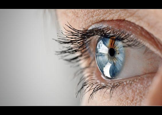 Auge | 2