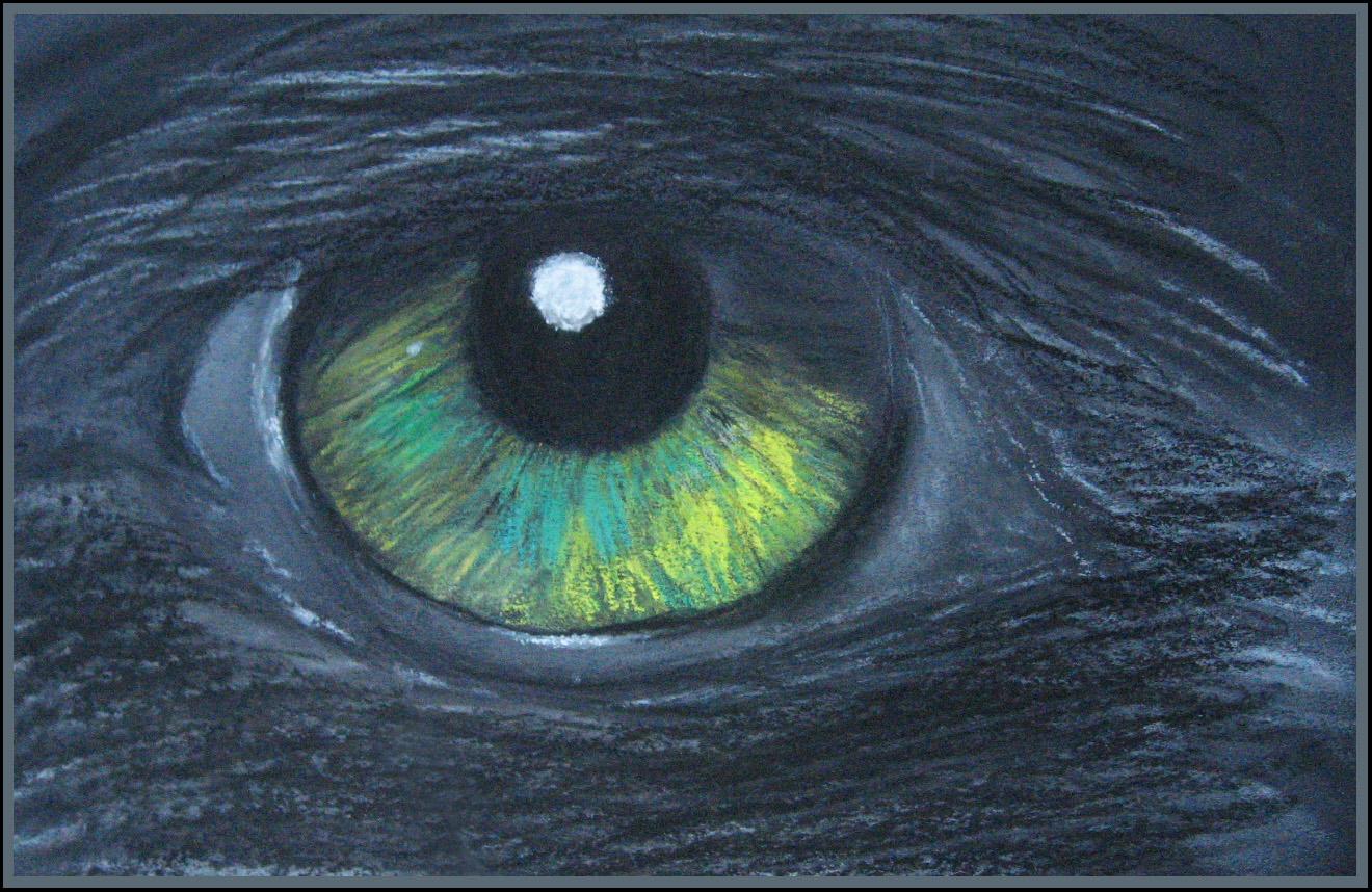 Auge einer schwarzen Katze