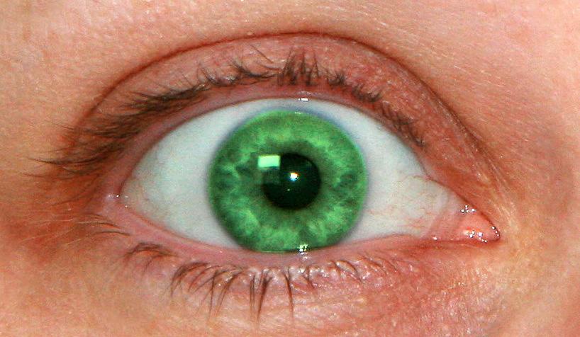 Auge, gruen