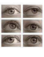 """""""Augen, Augen und Augen"""""""