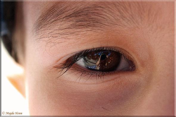 Augen....