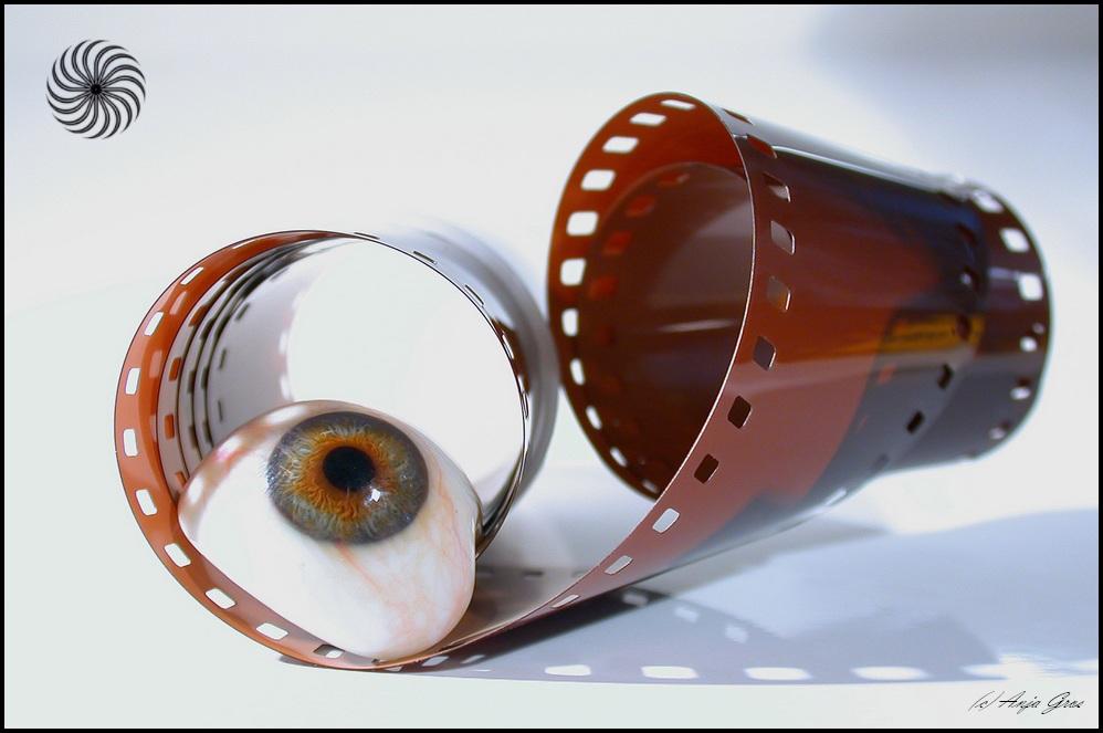 Augenblicke 18: Ein Auge auf den Fotografen werfen ;-)