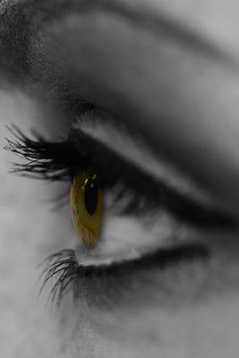Augenmakro I