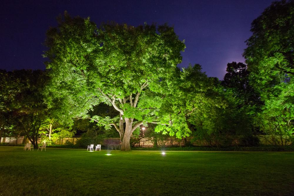 augsburg botanischer garten illumination 3 foto bild. Black Bedroom Furniture Sets. Home Design Ideas