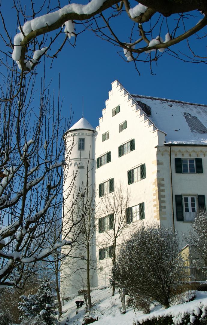 Aulendorf Schloß im Winter
