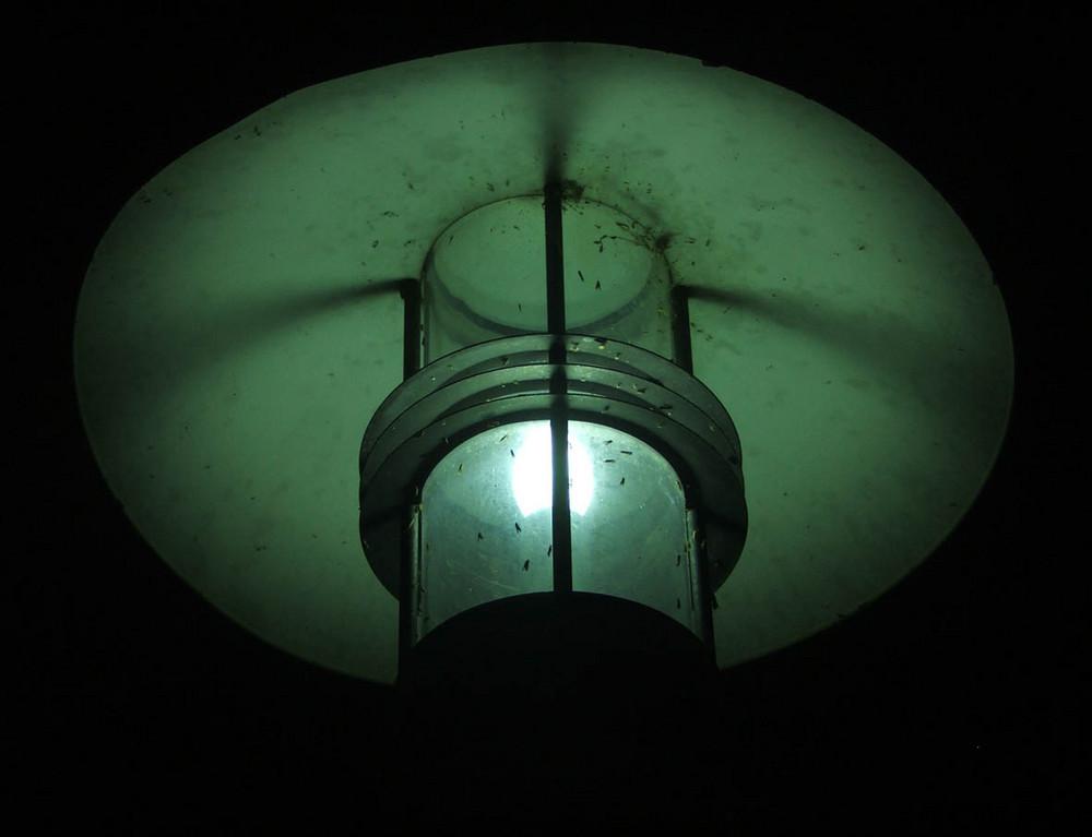 Aura einer Straßenlampe