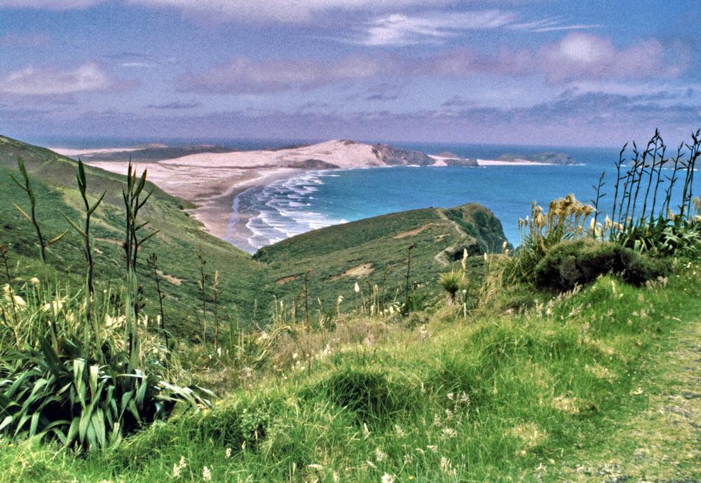 Aus dem Archiv: Cape Reinga