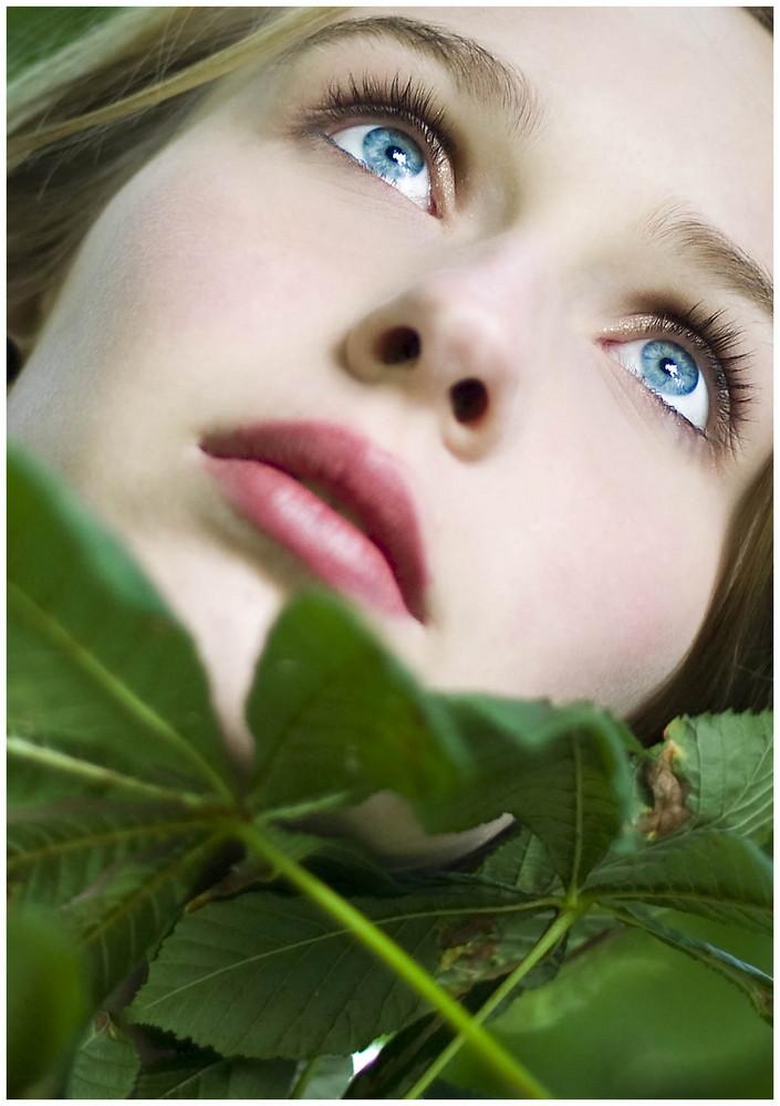 aus dem Baum heraus / blue eyes