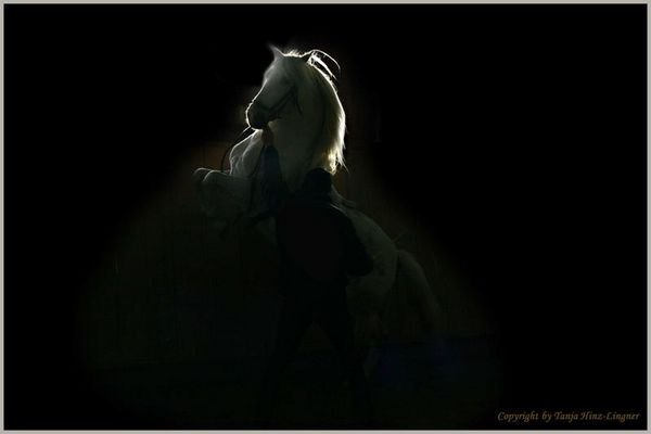 *Aus dem Dunkel ins Licht*
