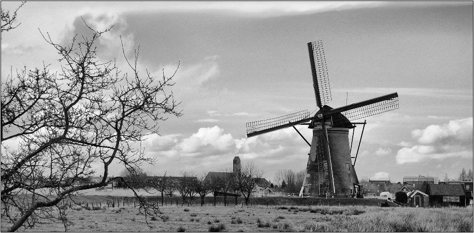 aus dem Land der Windmühlen 2