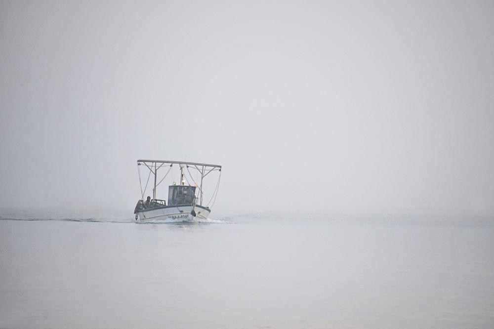 aus dem Nebel...
