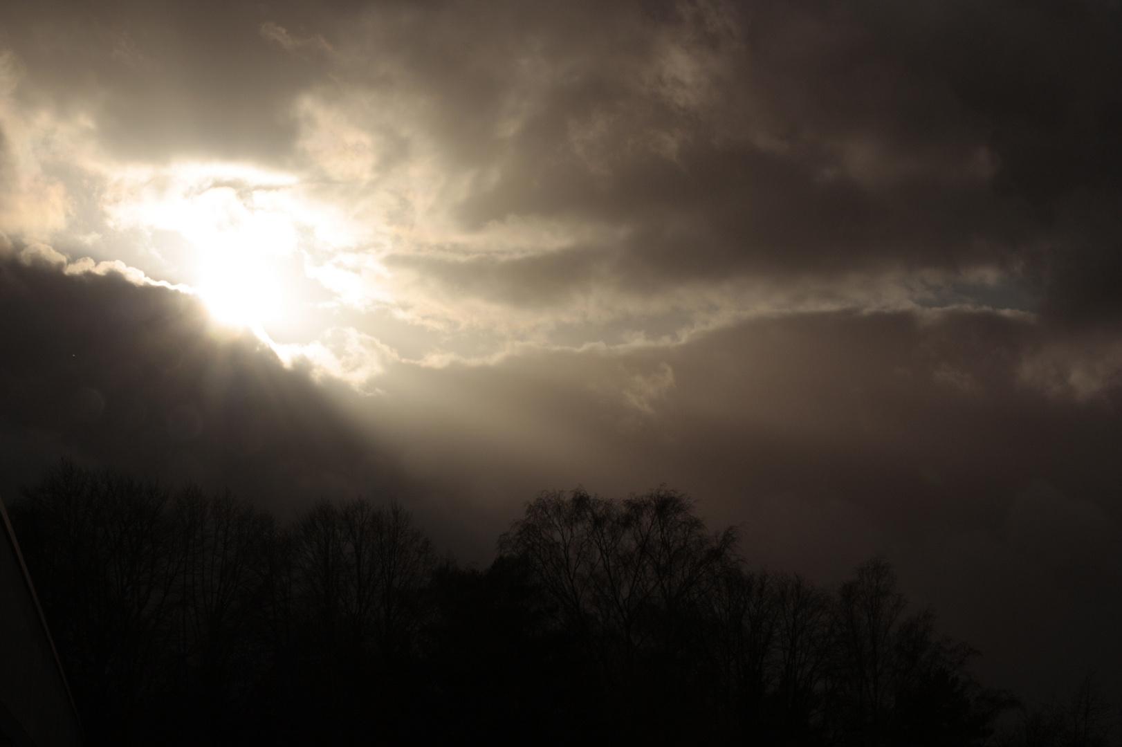 Aus meinem Fenster