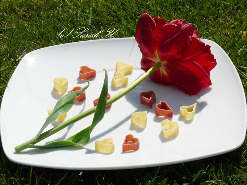 Aus Nudelschrank, Geschirrfach und Vase