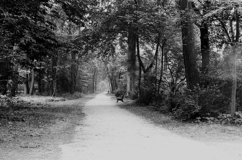 Aus-weg - Englischer Garten