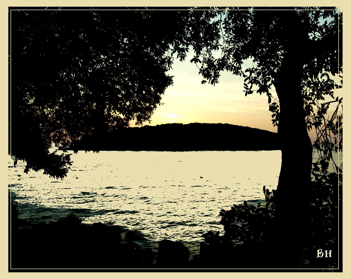 Ausblick Funtana / Kroatien auf das Meer