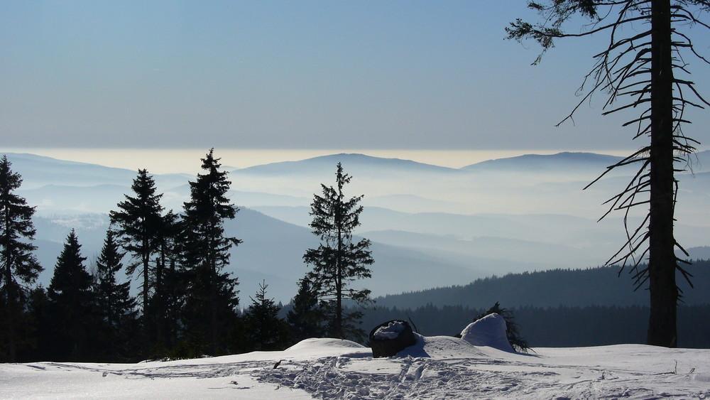 Ausblick von der Auerhahn-Loipe , Arber