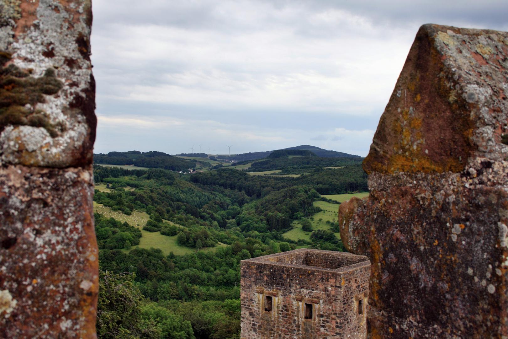 Ausblick von Turm der Kasselburg