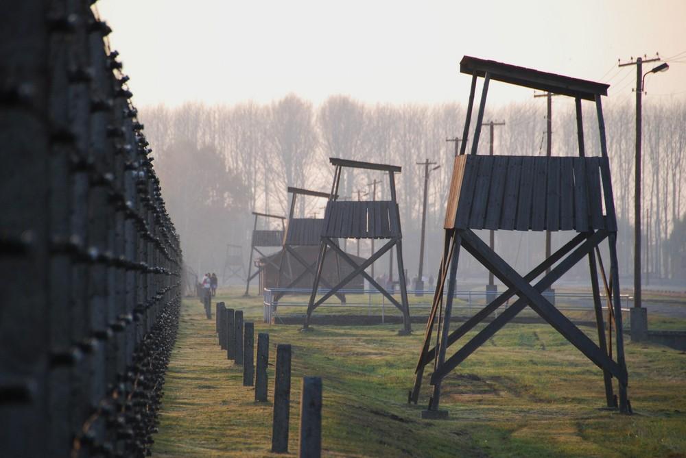 Auschwitz 5