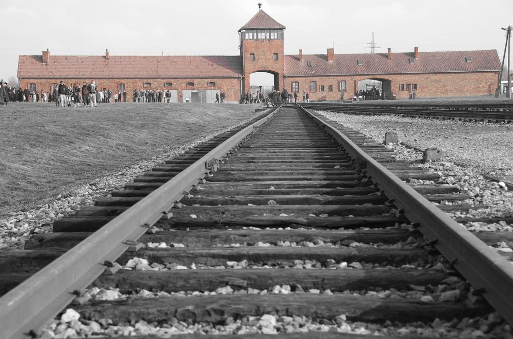 Auschwitz 6