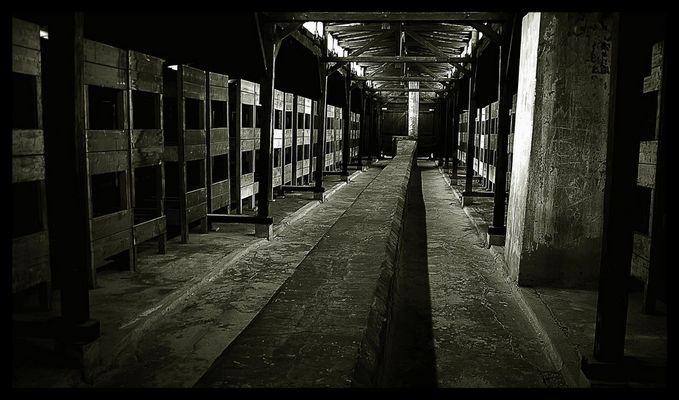 Auschwitz - Birkenau 03