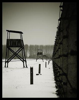 Auschwitz - Birkenau 05