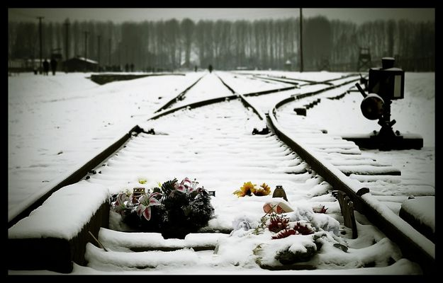 Auschwitz - Birkenau 07