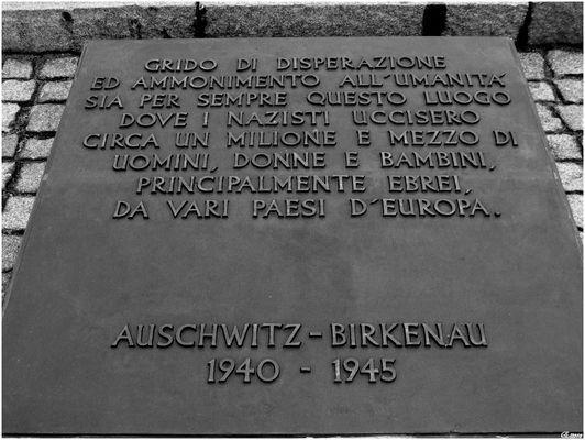 Auschwitz-Birkenau 1940-1945.........