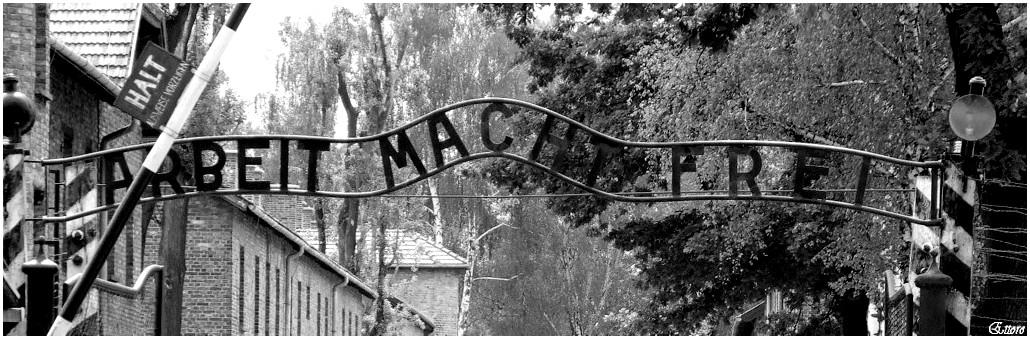 Auschwitz-Birkenau 1940-1945.